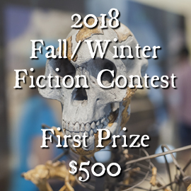 2018 Fall/Winter Fiction Contest—First Prize $500