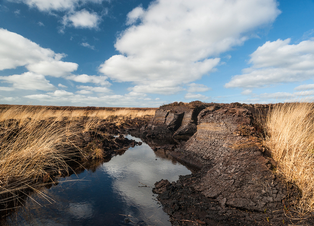 An Irish peat bog